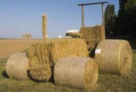 Strohballen-traktor