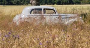 Oldtimer-Wandern im Ruppiner Seenland